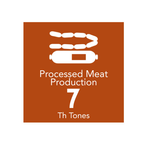 Processed Meat Production